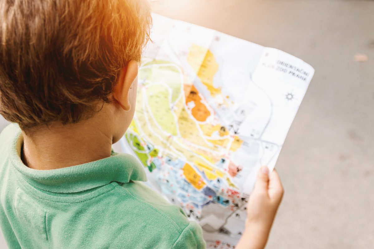 Boy studying zoo map