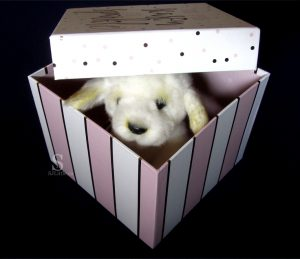 Toy dog peeking out of box