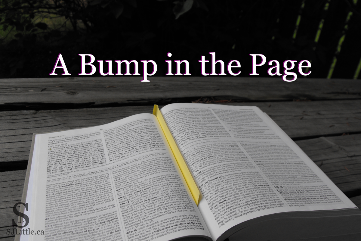 A Bump in the Page - Getting the foundation right from the start. Post by S. J. Little