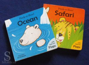 Peek a Boo! Ocean and Peek a Boo! Safari by Jess Stockham