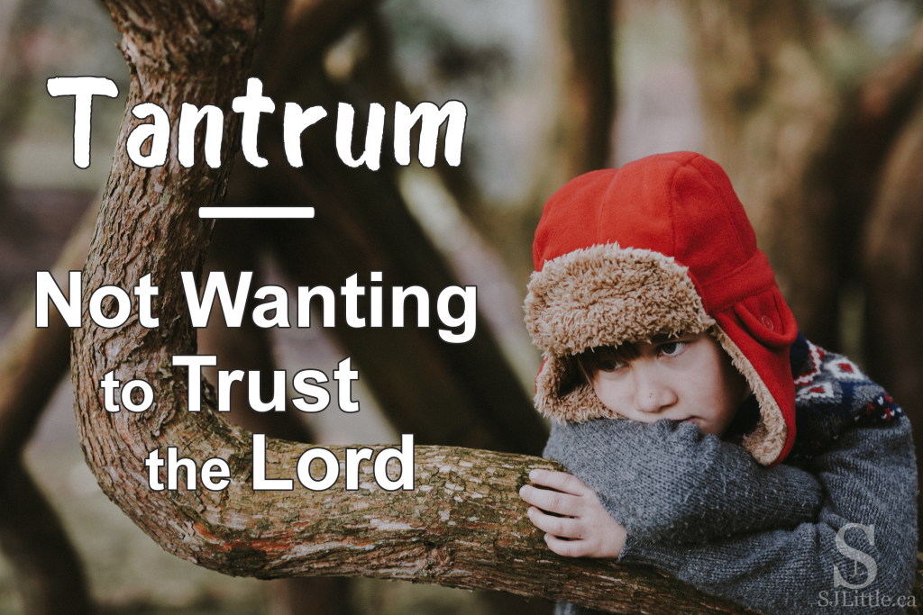 Tantrum – Not Wanting to Trust the Lord