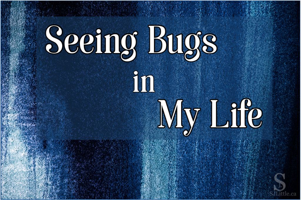 Seeing Bugs in My Life
