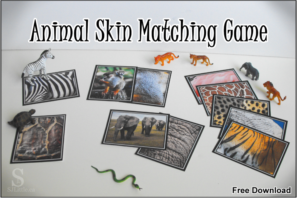 Zoo Animal Skin Matching Game