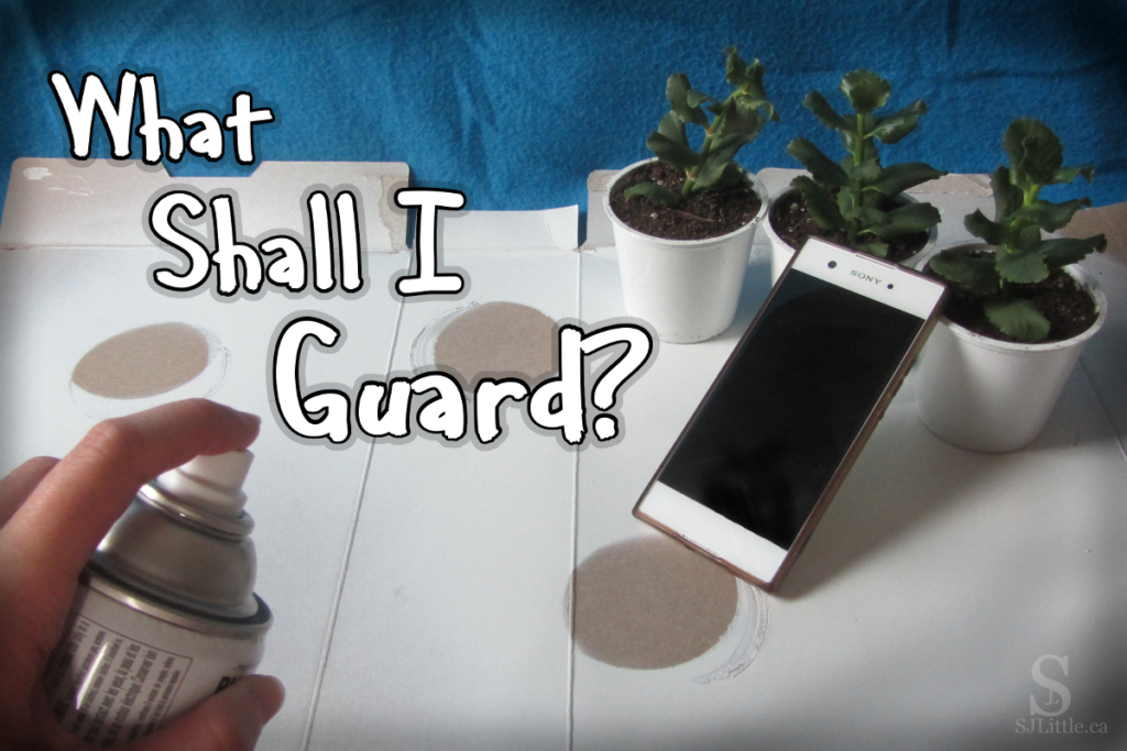 What Shall I Guard?