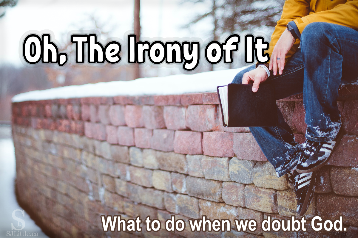 "Person sitting on snowy brick wall holding Bible behind title: ""Oh The Irony of It"""