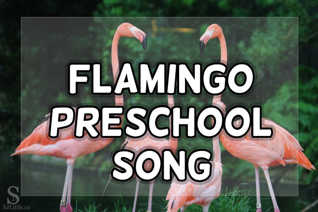 Flamingo Song For Preschoolers