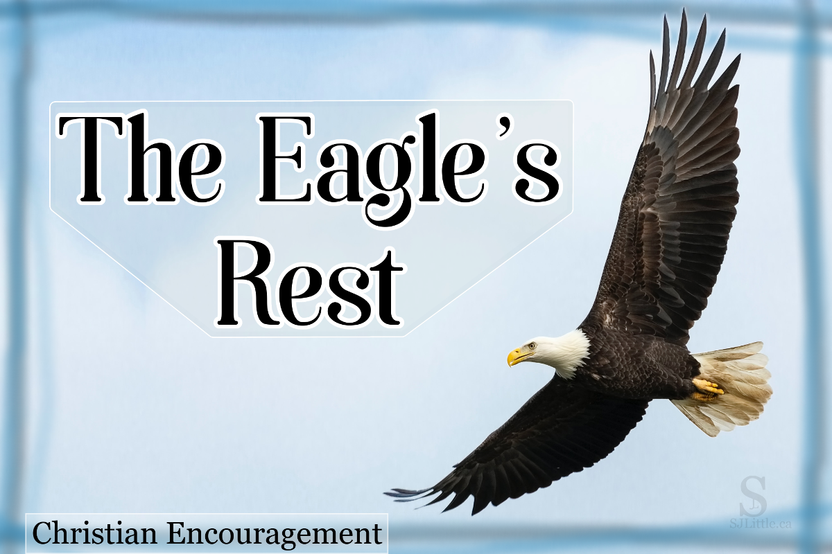 An eagle soaring behind title: The Eagle's Rest